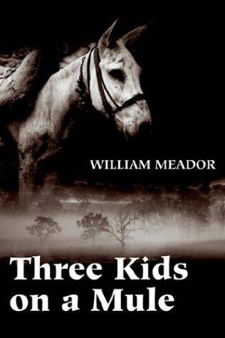 Download Three Kids on a Mule