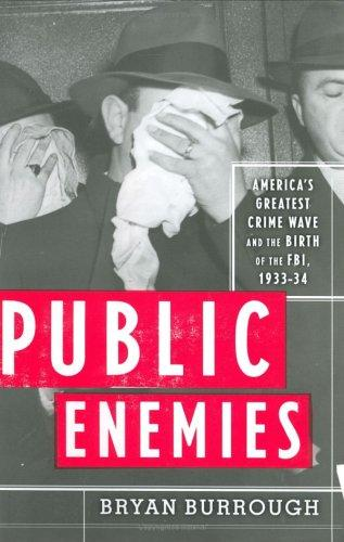 Download Public enemies