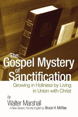 Download The Gospel Mystery of Sanctification