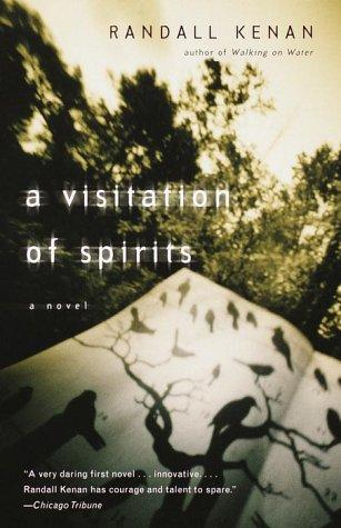 Download A visitation of spirits