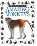 Amazing Monkeys (Eyewitness Juniors) by Scott Steedman
